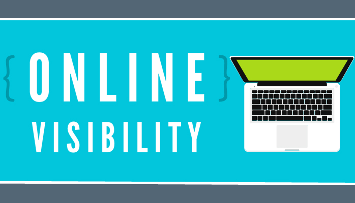 What is Online Visibility?